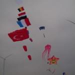 3D kite , Vlaggen