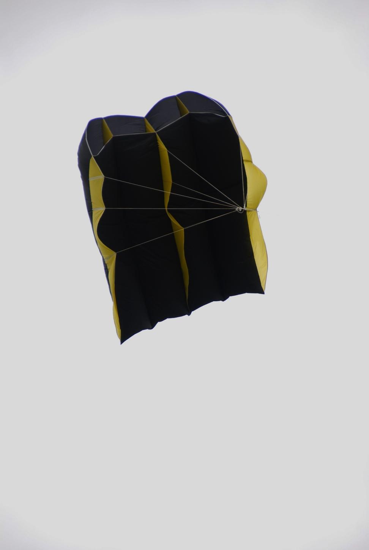 zwarte slede kite